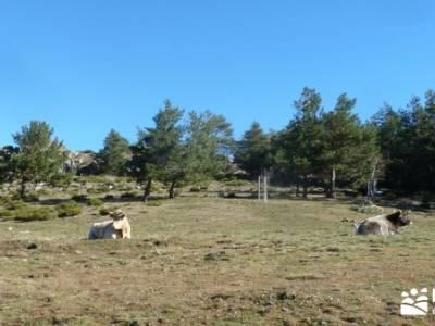 Chorro de San Mamés - Montes Carpetanos ;senderos ecologicos cazorla senderismo la rioja senderismo
